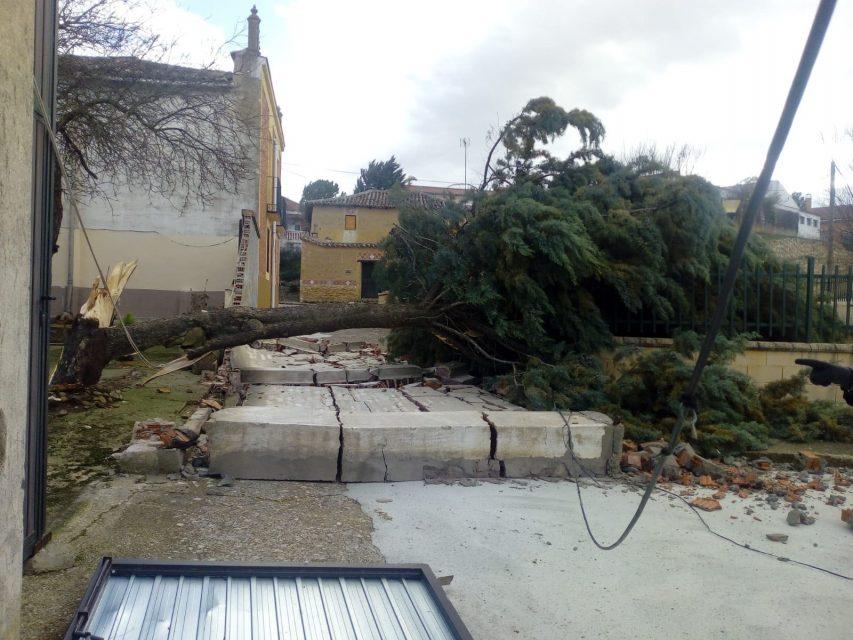 Un árbol cae sobre el parque infantil de Palazuelo por el viento