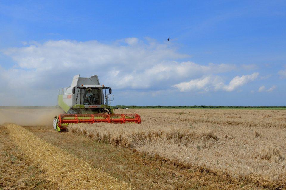 Las industrias agroalimentarias recibirán 65 millones de la Junta para mantener el empleo y las nuevas inversiones