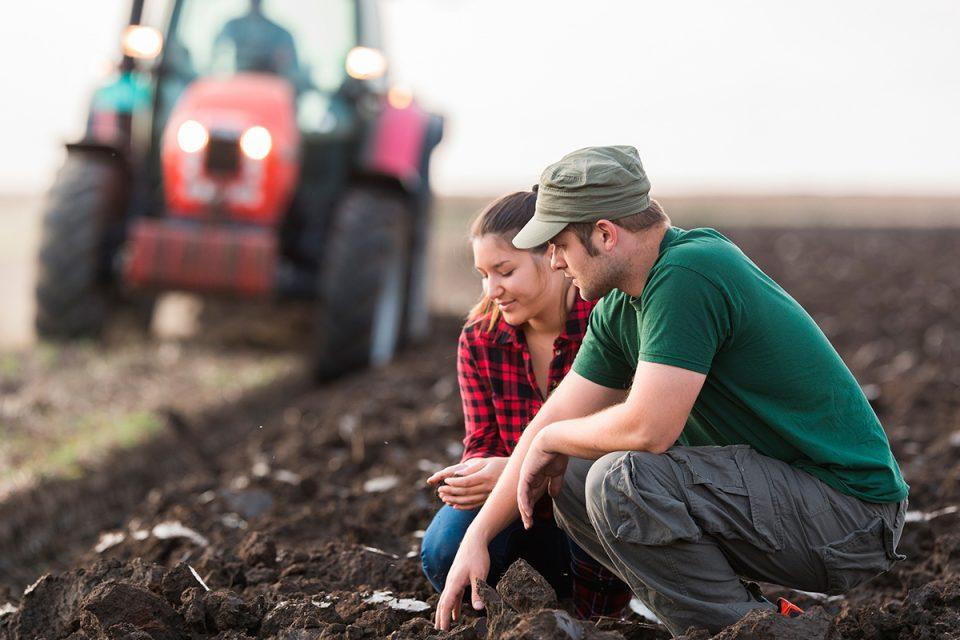 La Junta refuerza las ayudas a la incorporación de jóvenes agricultores y a las inversiones en explotaciones agrarias con 66 millones de euros adicionales