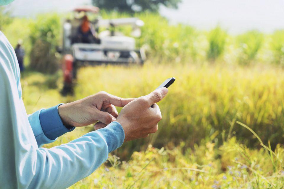 La Junta aporta 4 millones de euros a la convocatoria estatal de subvenciones para la extensión de internet en el medio rural