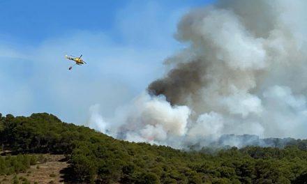 La Junta rebaja a nivel 0 el fuego declarado entre Villagarcía de Campos y La Santa Espina